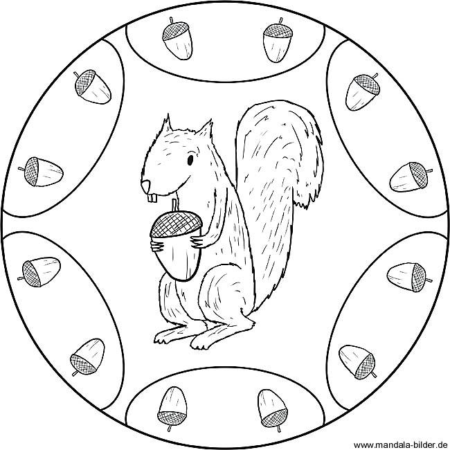 Eichhu00f6rnchen - Gratis Mandala als Ausmalbild zum Ausdrucken