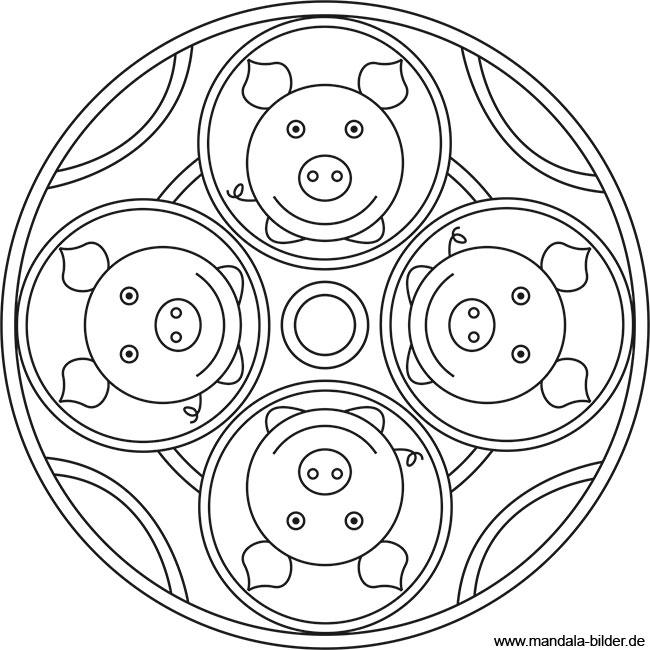 Mandala Ausmalbild mit vier Glücksschweinchen