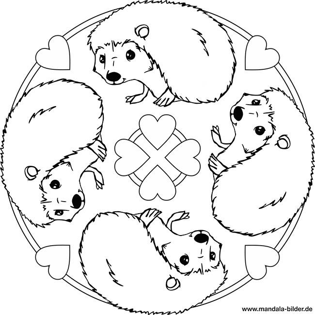 Mandala Igel Kostenlose Ausmalbilder Fur Kinder