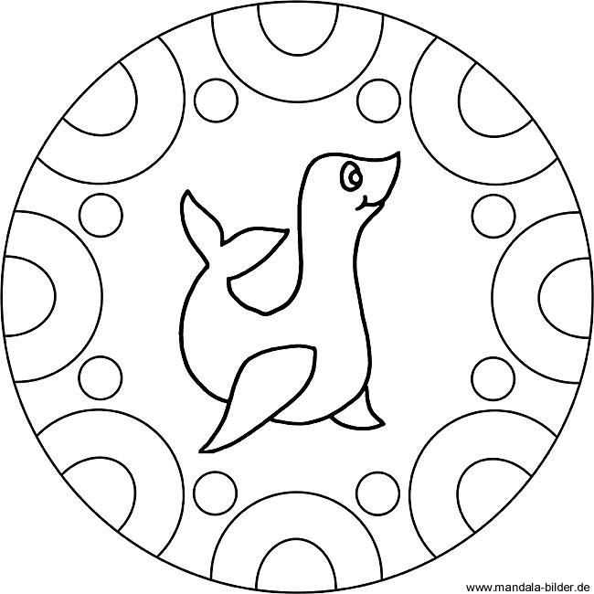 Seehund Mandala - Ausmalbild zum Ausdrucken und Ausmalen